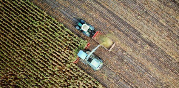 Dwa traktory na polu